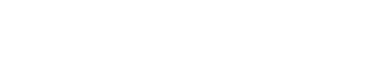 Cougar Partners